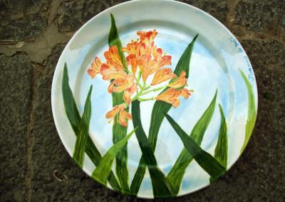FlowerPlate18